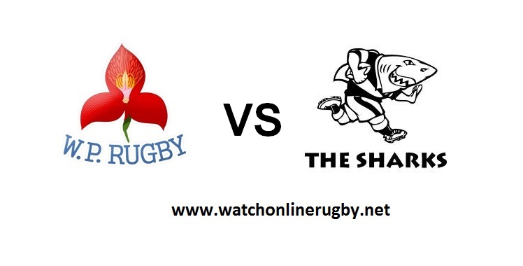 live-streaming-w-province-vs-sharks