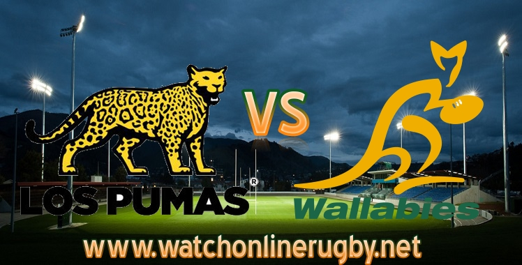 live-arg-vs-aus-rugby