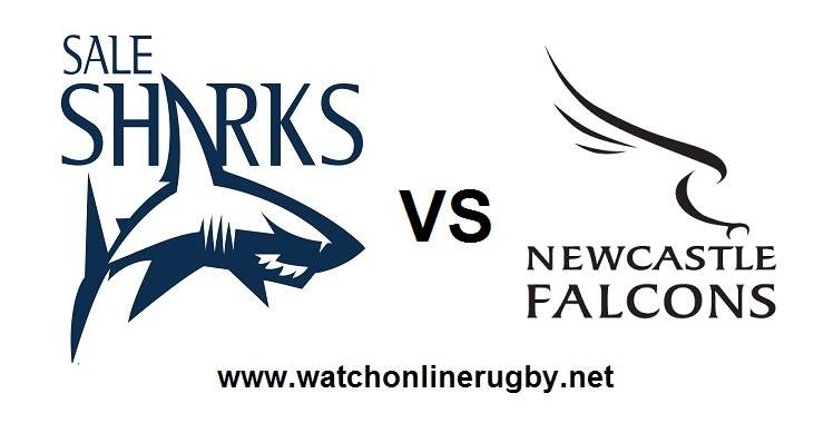 live-2018-sharks-vs-newcastle-falcons