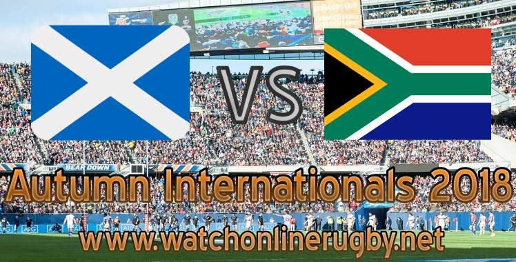 Scotland VS South Africa Live rugby