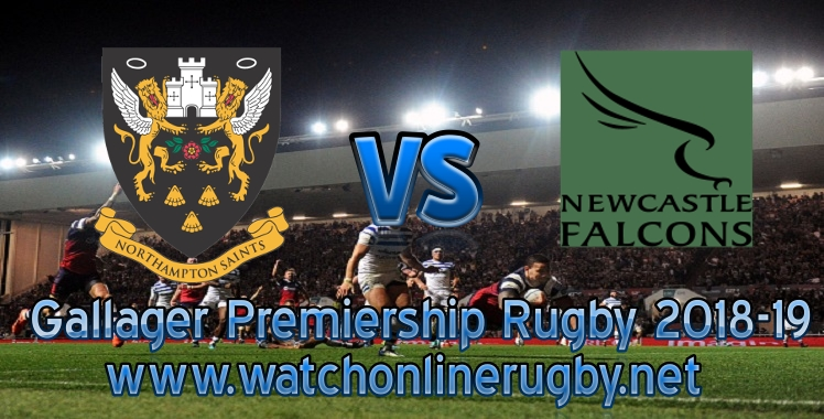 saints-vs-newcastle-falcons-live-stream