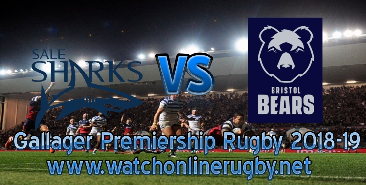 sale-sharks-vs-bears-live-streaming