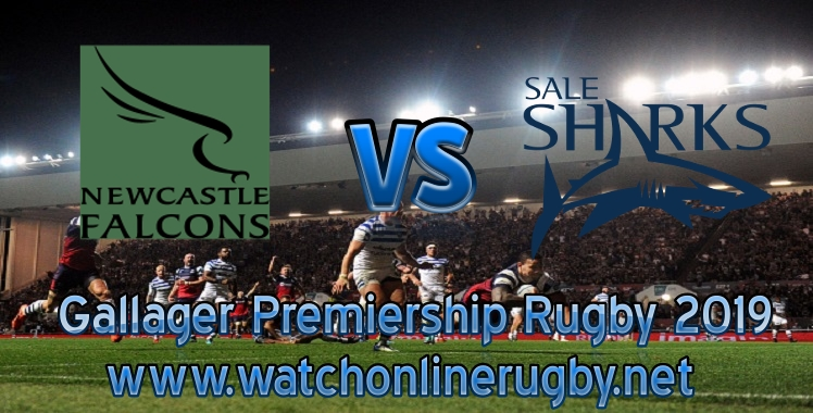 falcons-vs-sharks-2019-rugby-live-stream