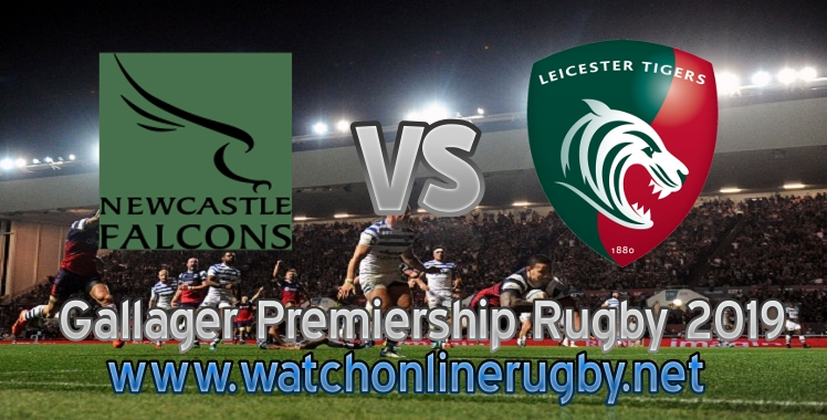 Falcons VS Tigers 2019 Rugby Live Stream