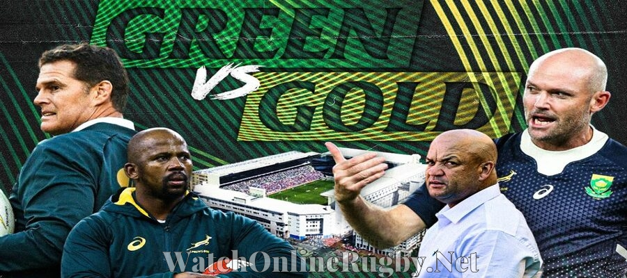 green-vs-gold-springboks-showdown-live-stream