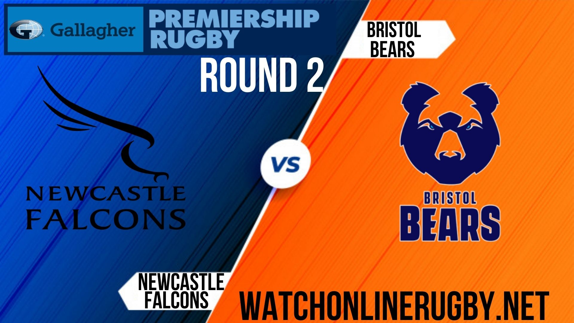 newcastle-falcons-vs-bristol-bears-live-stream