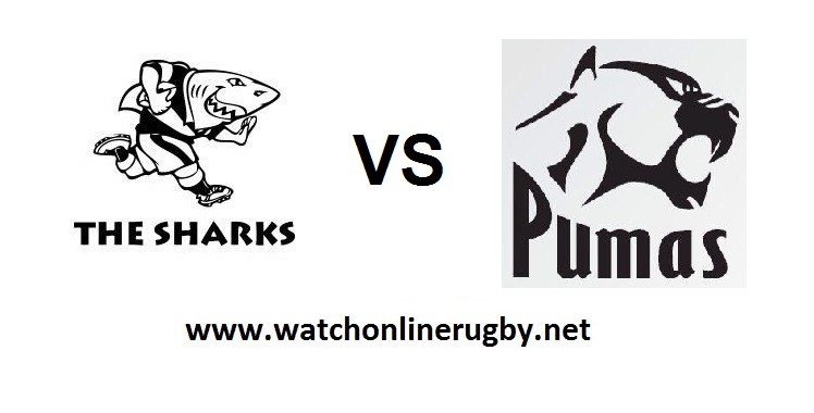 natal-sharks-vs-pumas-live