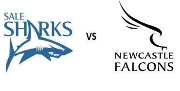 Newcastle Falcons VS Sale Sharks Live Stream