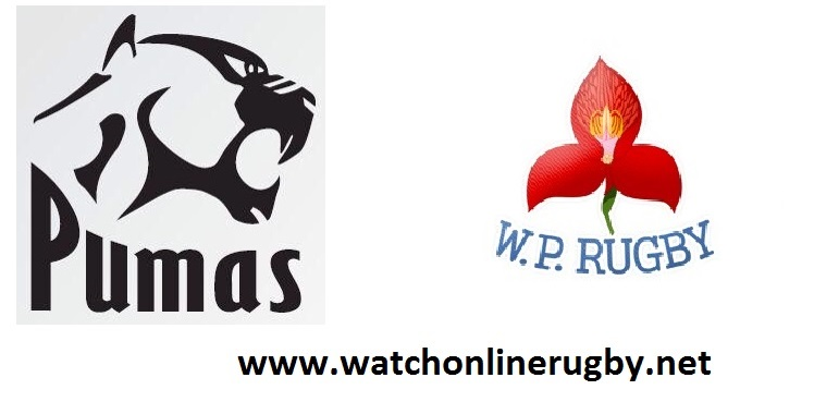 pumas-vs-western-province-live-hd