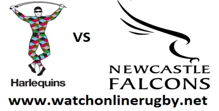 live-harlequins-vs-newcastle-falcons-online