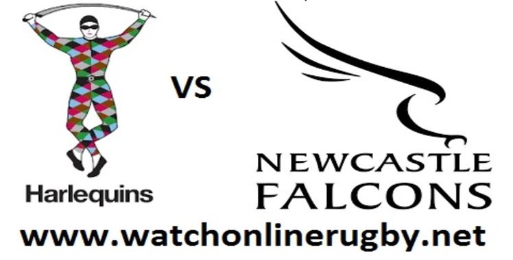 live-harlequins-vs-newcastle-falcons-online