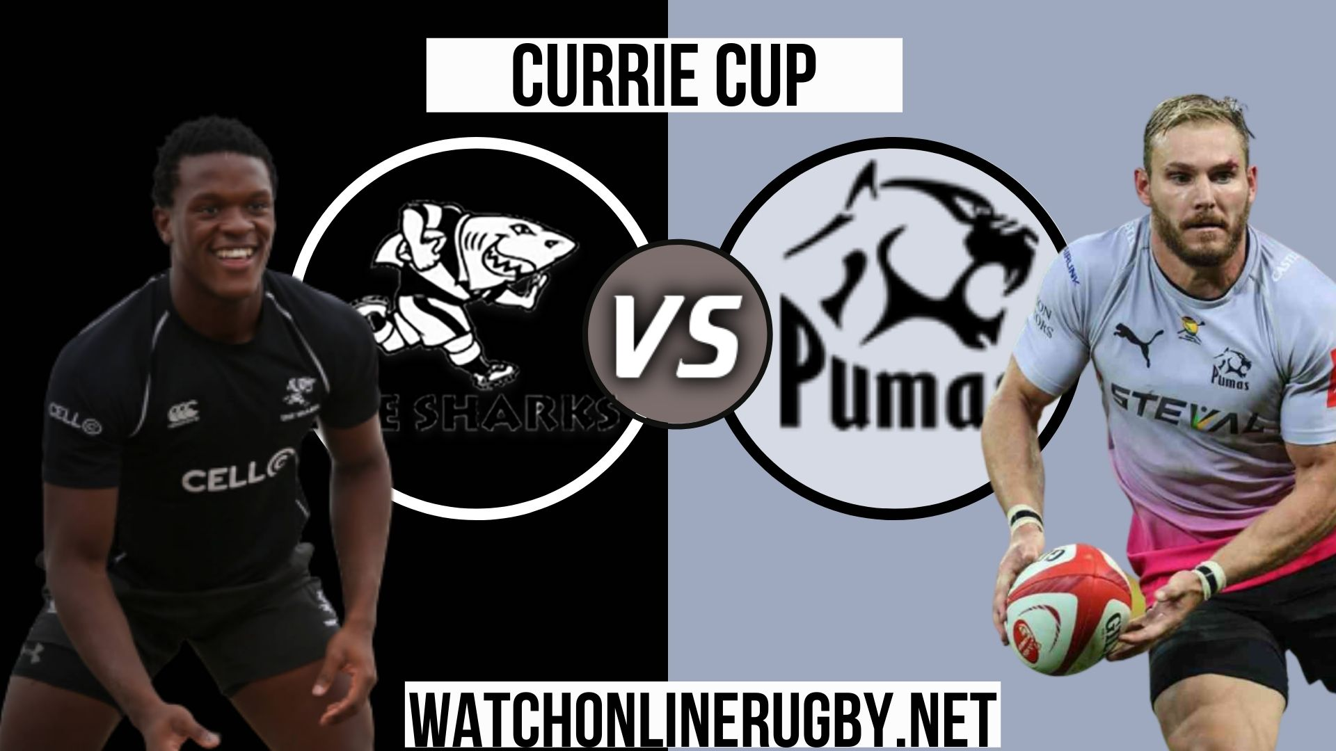 Sharks vs pumas Currie Cup 2020