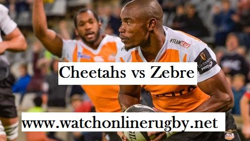 Zebre vs Cheetahs live