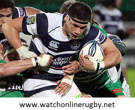 Counties Manukau vs Auckland Live Online