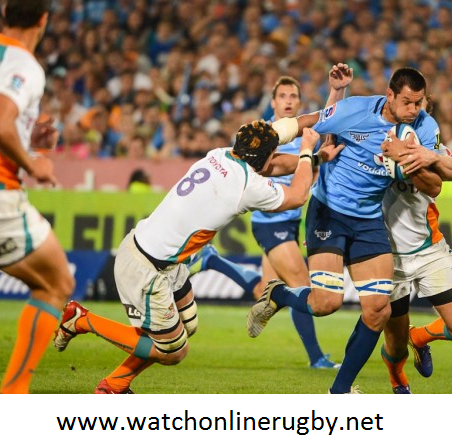 Golden Lions vs Free State Cheetahs Rugby Live Stream