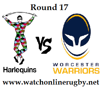 Harlequins vs Worcester