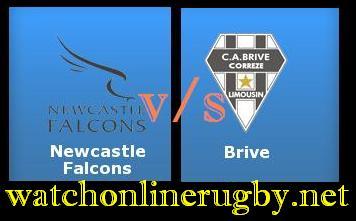 Brive vs Newcastle Falcons