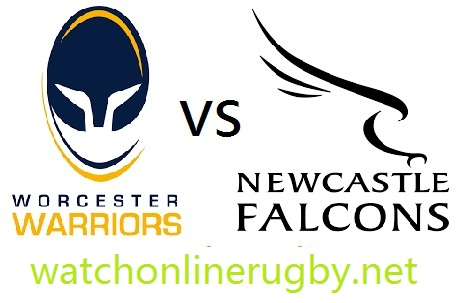 Worcester Warriors vs Newcastle Falcons live