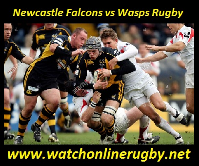 Newcastle Falcons vs Wasps Rugby