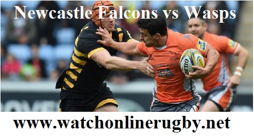 Newcastle Falcons vs Wasps live