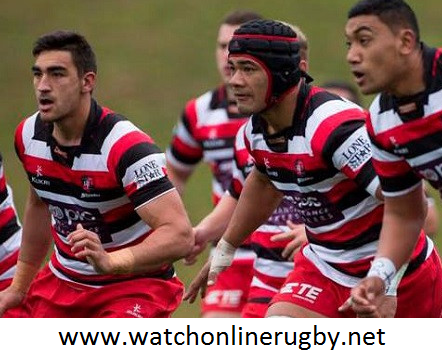 Rugby Counties Manukau vs Wellington Live Streaming