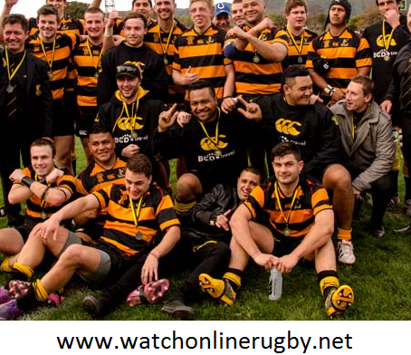Wellington vs Northland 2016 Live Online