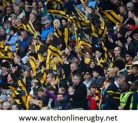 Zebre vs Wasps 2016 Live Streaming