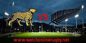 Argentina VS New Zealand Rugby Live Streaming