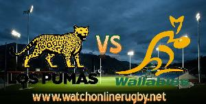 Live ARG VS AUS Rugby